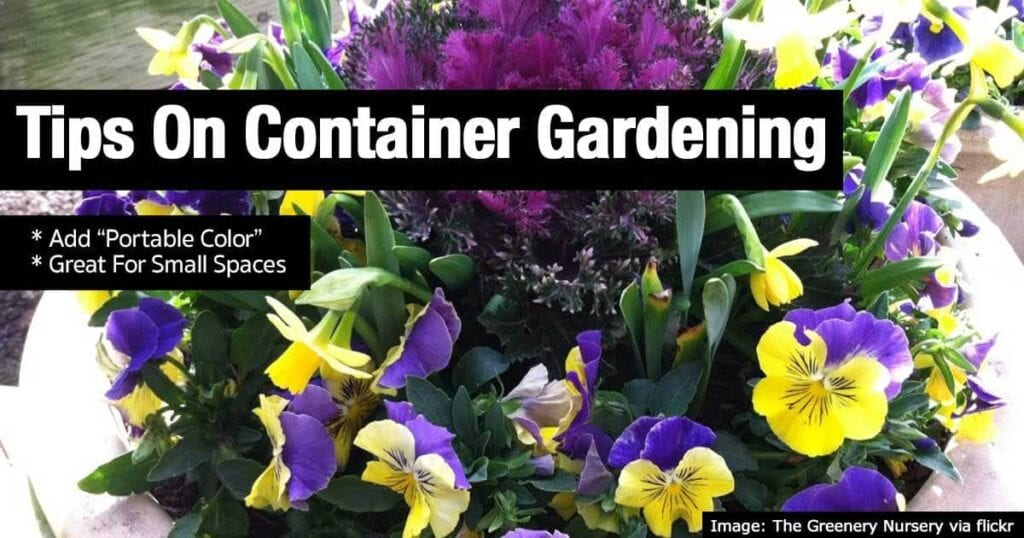 tip-container-gardening-08312015