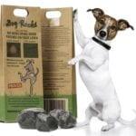 Dog Rocks: ¿evitan quemaduras en el césped?
