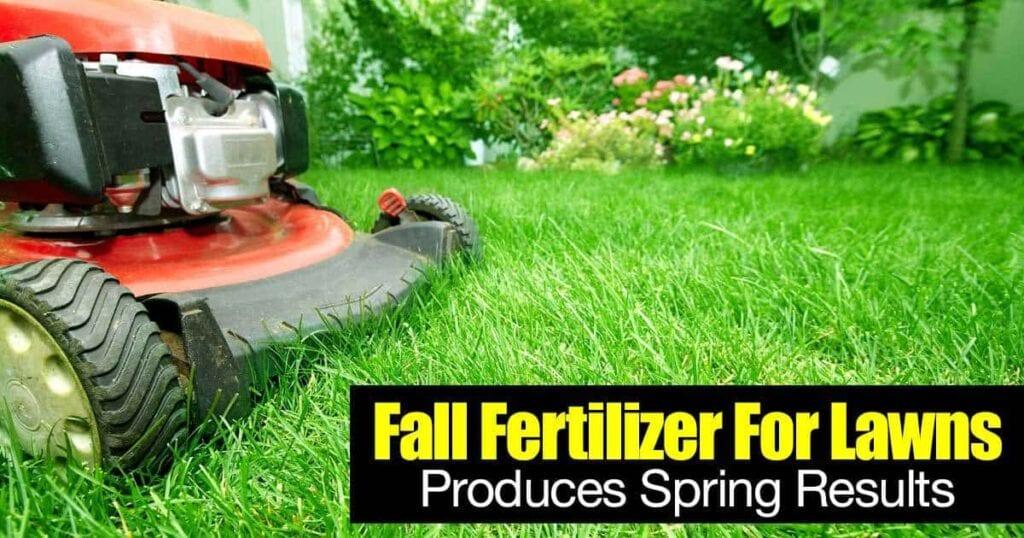 fertilizante de otoño para resultados de primavera