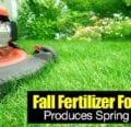 El fertilizante otoñal para césped produce resultados primaverales