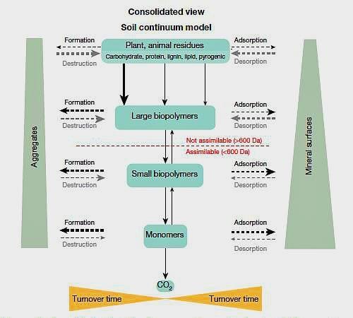 humus Contentious Nature of Soil Organic Matter