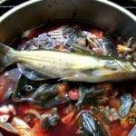 El mito de los fertilizantes para peces: no es el mejor fertilizante