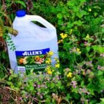 El mito del asesino de malas hierbas del vinagre revisado