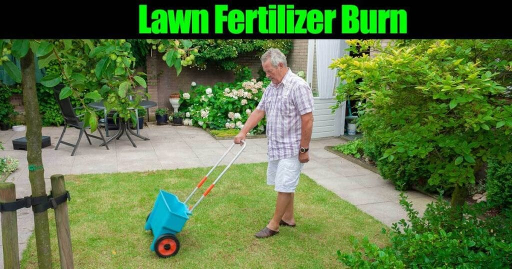 fertilizante-para-césped-12312015