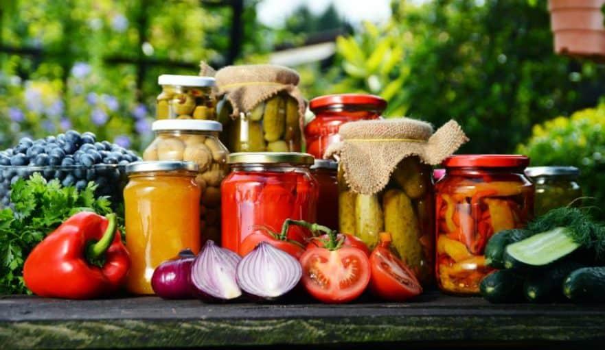 Guía para principiantes enlatados ⋆ Gran blog sobre jardinería