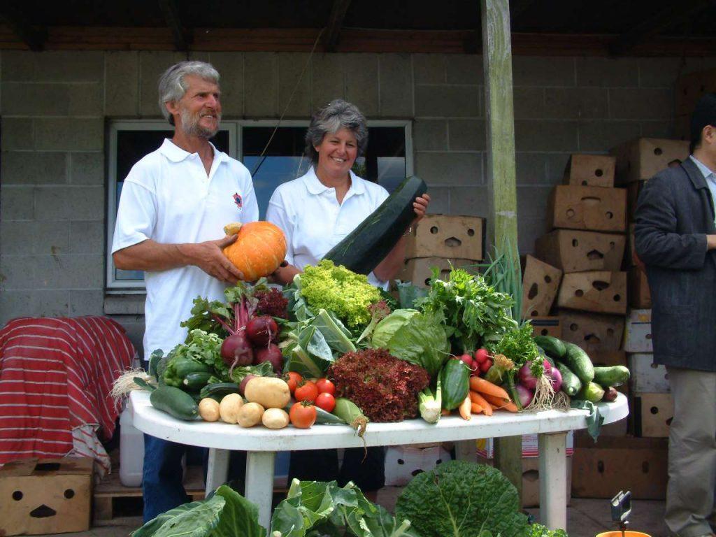 Haz la transición de tu jardín al otoño