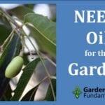 Insecticida y fungicida para plantas con aceite de neem