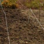 fertilizante o corrector de suelo para jardín o césped