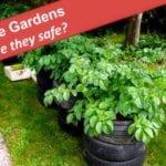 Jardines de neumáticos para patatas y tomates: ¿es seguro?