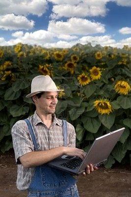 La demanda de alimentos orgánicos inspira soluciones tecnológicas para los agricultores