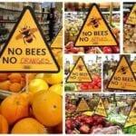 Las abejas están muriendo, ¿estamos perdiendo nuestro suministro de alimentos?