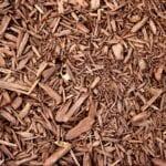Las astillas de madera ofrecen la mejor cobertura orgánica ⋆ Great gardening blog