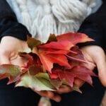 Las hojas de otoño pueden dañar tu jardín