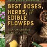 Las mejores rosas, hierbas y flores comestibles ⋆ Gran blog sobre jardinería