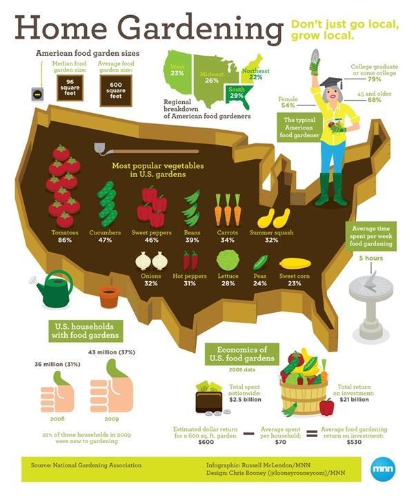 Las verduras más populares cultivadas en los patios traseros estadounidenses