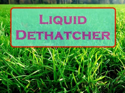 Biological Liquid Dethatcher for Lawns - Do They Work?