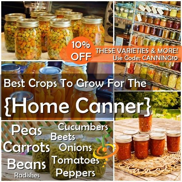 Los mejores cultivos para cultivar conservas caseras