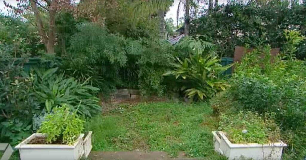 Pequeño jardín japonés transforma este patio trasero