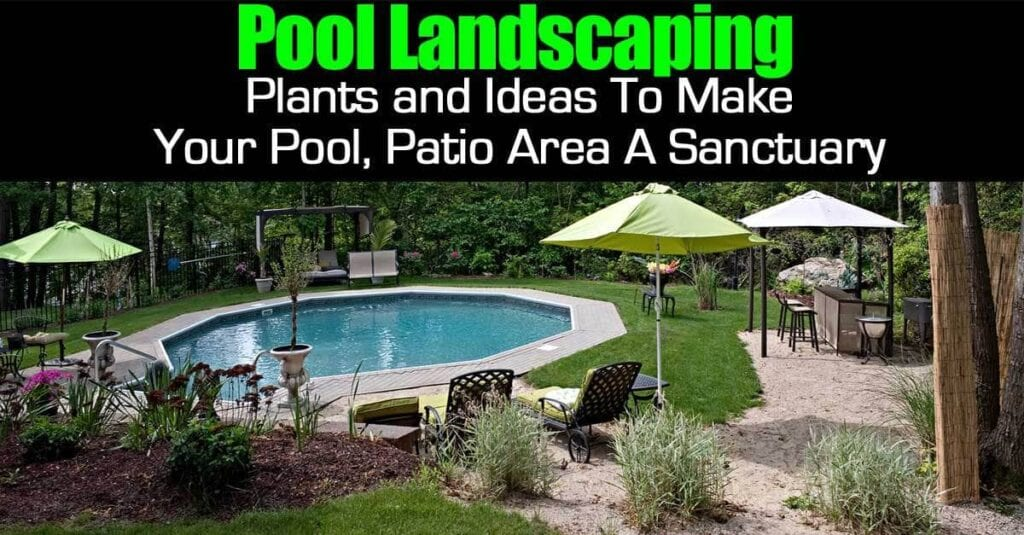 pool landscape plants dress up in-ground and above ground pools