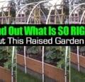 Por qué esta cama de jardín elevada está hecha de la manera correcta