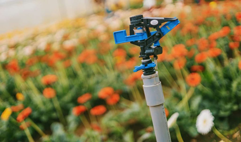 Principios básicos del diseño de riego de jardines para sistemas de riego ⋆ Great gardening blog