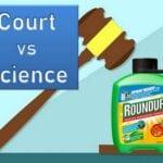 Roundup (glifosato), cáncer y los tribunales: ¿qué significa eso?