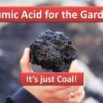 Sustancias húmicas como el ácido húmico: ¿son buenas para el jardín?