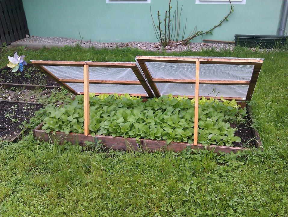 Técnicas de extensión de 5 estaciones para la jardinería durante todo el año