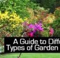 Una guía para diferentes tipos de arbustos de jardín -