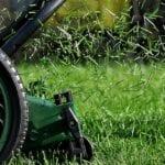 Cortadora de césped de alta calidad para cuidar su césped orgánico