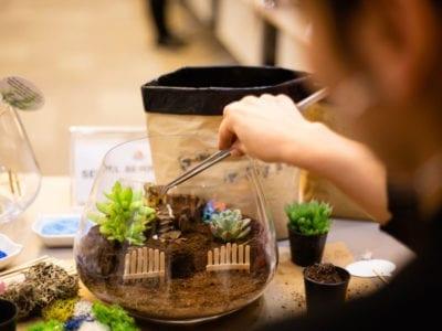 Ideas para regalos de jardinería para principiantes: regalos para un jardinero para principiantes