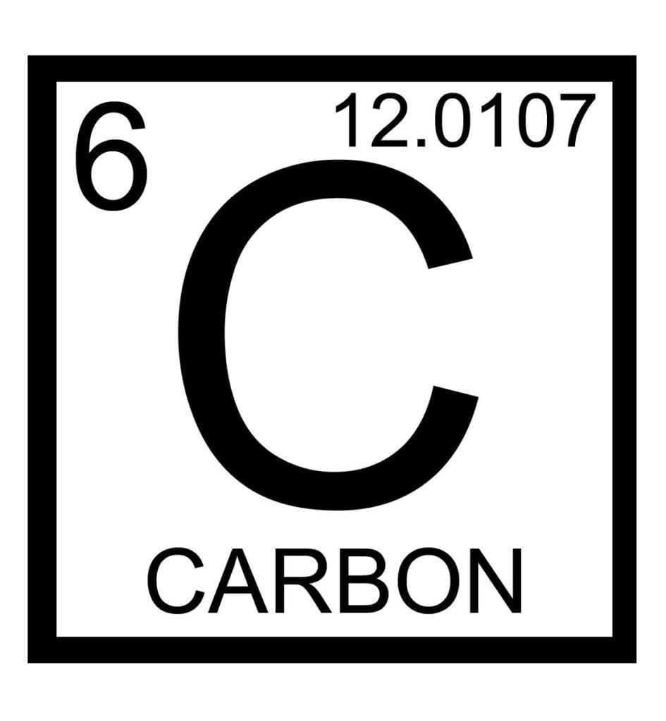 Crecimiento de carbono y plantas: ¿cómo toman las plantas el carbono?