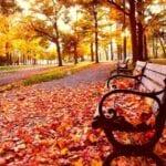 Celebrando el equinoccio en los jardines: qué hacer el primer día de otoño