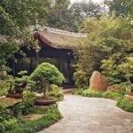 Plantas de jardín chino: cómo crear un estilo de jardín chino