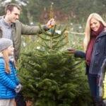 El mejor árbol de navidad para tu familia