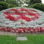 Clock Garden Design - ¿Qué son los jardines del reloj?