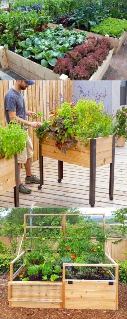 Cómo jardín en camas levantadas en Pavement