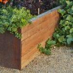 Cultivos perennes en crecimiento como un hustle lateral