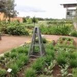 Elija el tamaño de su jardín de verduras