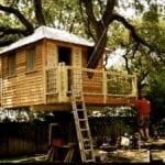 Ideas de la casa del árbol para adultos: cómo hacer una casa del árbol para adultos para su jardín