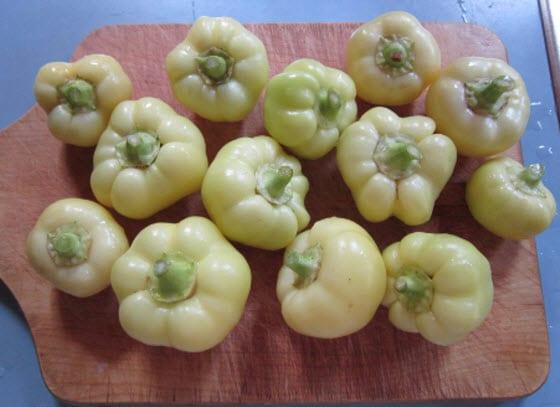 Cómo secar Tomates, Peppers y Herbs