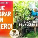 Qué plantar ahora: Guía del jardín de febrero