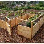 ¿se Elevan Las Camas De Jardín Vegetal Para Usted?
