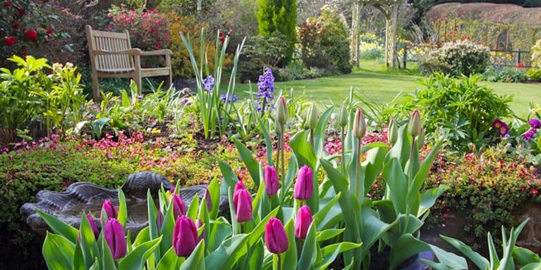 Todos los jardines verdes: consejos para diseñar un jardín con follaje